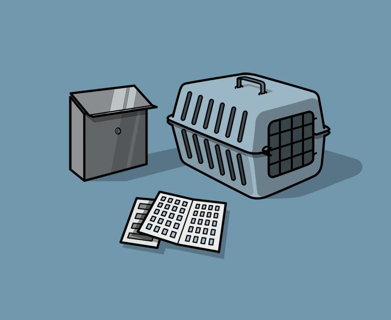 Katzentransportbox/ div. Hundeleinen